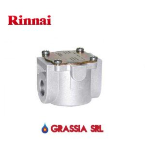 filtro gas rinnai
