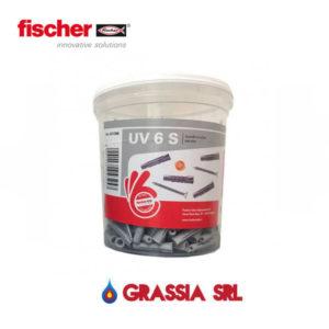 531386 TASSELLI FISCHER